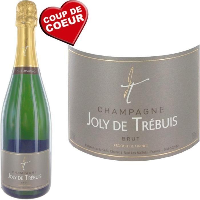 Bouteille de champagne Joly De Trebuis 75cl