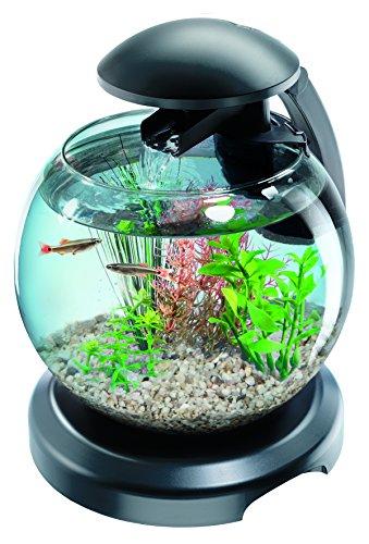 Aquarium Tetra Globe Noire 6,8L