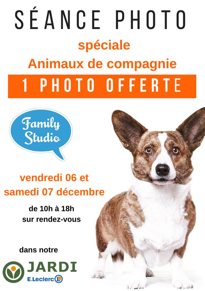 Séance photo spéciale animaux de compagnie - Saint-Étienne-du-Rouvray (76)