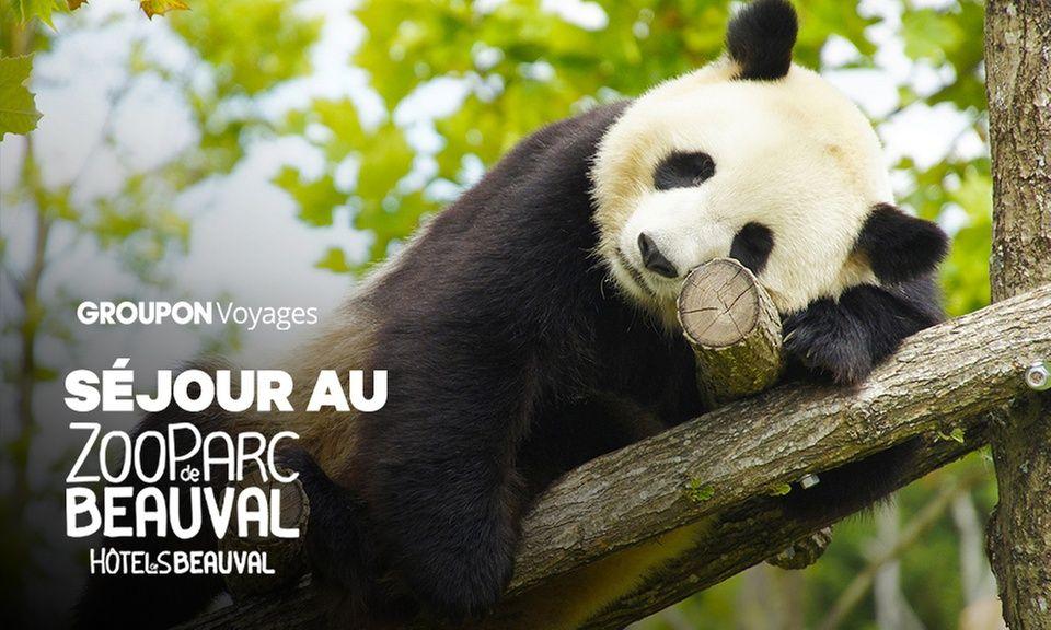 Séjour au ZooParc de Beauval avec nuit à l'hôtel Les Hauts de Beauval + petits déjeuners + entrées (pour 2 personnes) - Saint-Aignan (41)