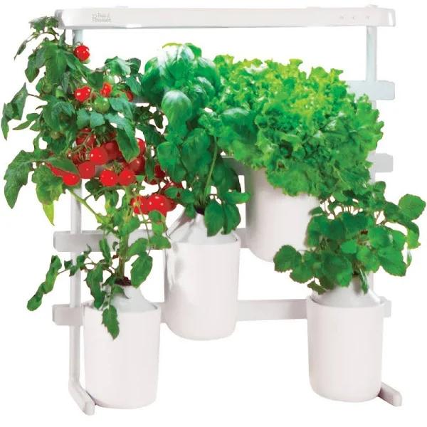 Potager d'intérieur Modulo de Prêt à pousser (84.95€ avec le code FETES2019)
