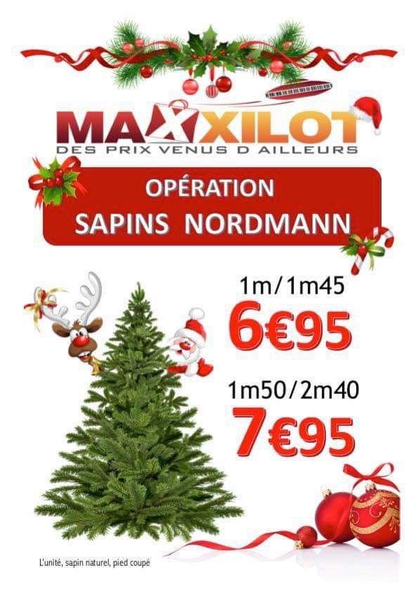 Sapin naturel Nordmann (1m/1m45) - Maxxilot Beauvais (60)