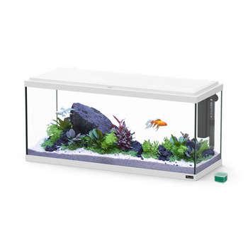 Aquarium Explorer Amsterdam, 85L - Mauguio (34)