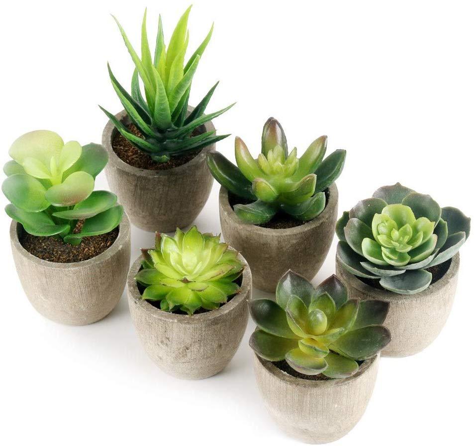 Lot de 6 plantes artificielles GoMaihe (vendeur tiers)