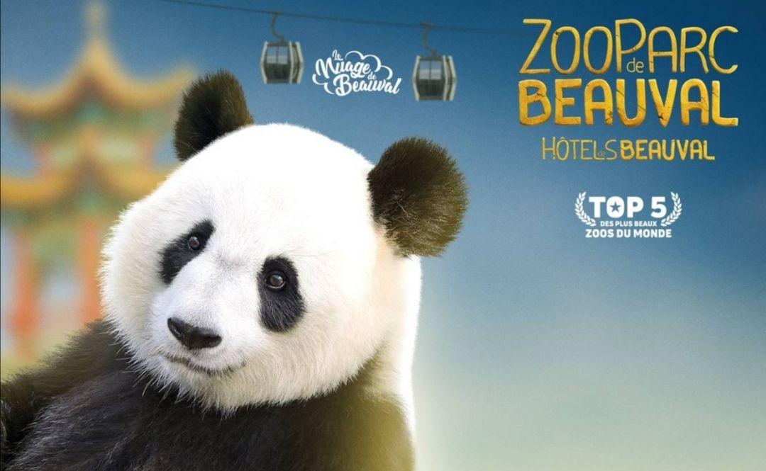 Billet 1 jour pour le ZooParc de Beauval - Adulte à 24€ ou Enfant de 3 à 10 ans à 18€ - Saint-Aignan (41)