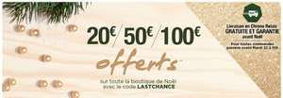 20€ de réduction dès 100€ d'achat, -50€ dès 200€, -100€ dès 300€ d'achat sur les offres de noel