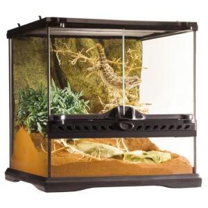 Terrarium en verre Exo Terra - 30 x 30 x 30 cm