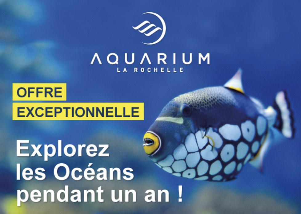 Passport annuel à l'aquarium de La Rochelle (17)