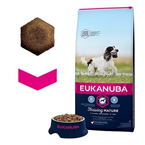 Croquettes pour chien senior Eukanuba - Poulet - 15kg