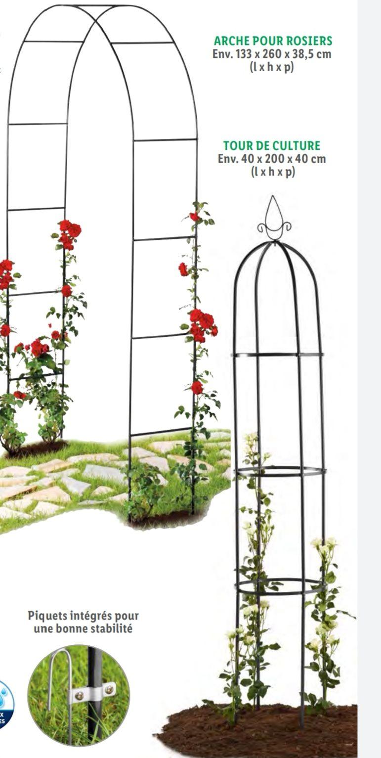 Arche pour rosiers - 133x260x38.5cm
