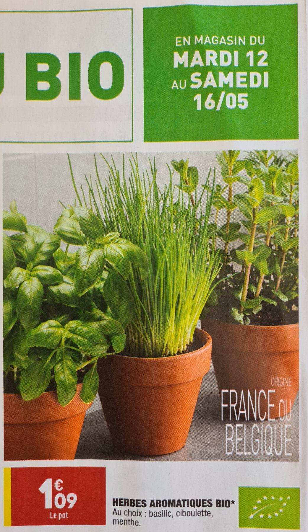 Herbes aromatiques Bio (Plusieurs variétés)