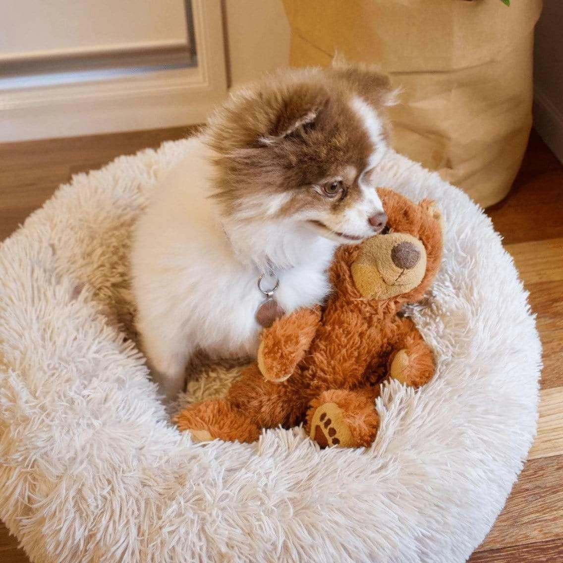 Lit apaisant Comfy pour chien ou chat (puppylove.fr)