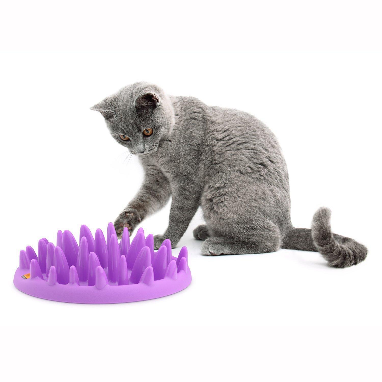 Gamelle interactive pour chat, chien, loupiot, etc...