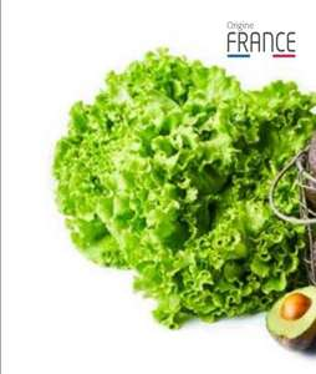 Lot de 2 salades Batavia - Catégorie 1, Origine France