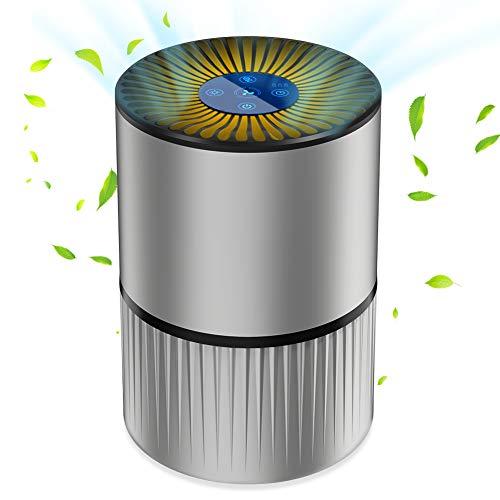 Purificateur d'Air Anion - Filtre à Charbon, 5 filtrations, 3 Vitesses, Minuterie (Vendeur tiers)