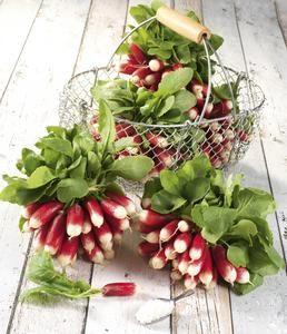 Lot de 2 bottes de radis roses - 1 kg, Origine France