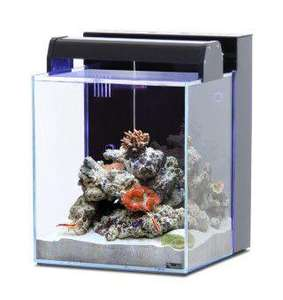 aquarium eau de mer aquatlantis new nano marin 40 40l. Black Bedroom Furniture Sets. Home Design Ideas