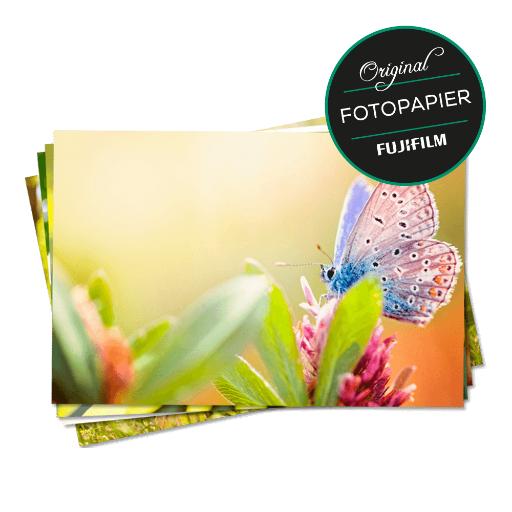 Lot de 100 photos Fujifilm 10 x 15 cm - Globus (Frontaliers Allemagne)