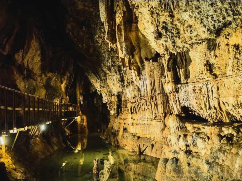 Entrée Offerte à la Grotte de Limousis dès 20€ d'achat auprès des producteurs locaux - Limousis (11)