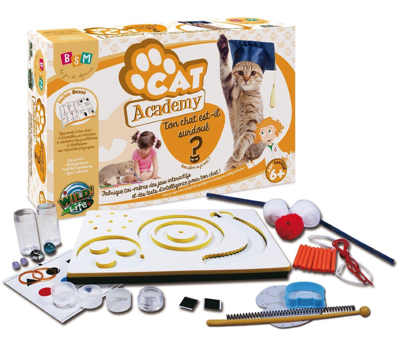 Malette de Jeu BSM Sciences Cat ou Dog Academy