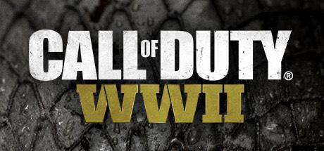 Call of Duty®: WWII sur PC (Dématérialisé)