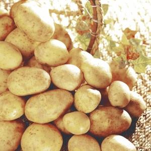 """Filet de 10 kg de pommes de terre de consommation """"Marabel"""" - origine France"""
