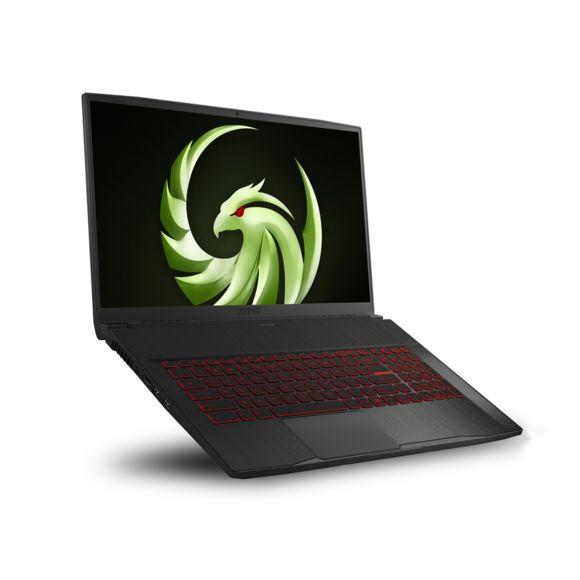 "PC Portable 17.3"" MSI Bravo 17 120Hz - AMD R5 4600H, SSD 512 Go, 16 Go RM, AMD RX 5500M, Windows 10"