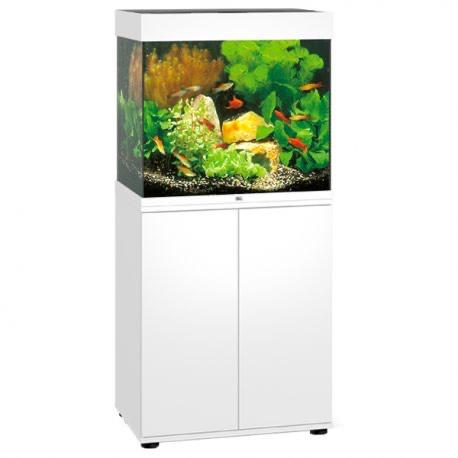 Aquarium juwel Lido 120 tout équipé (aqua-store.fr)