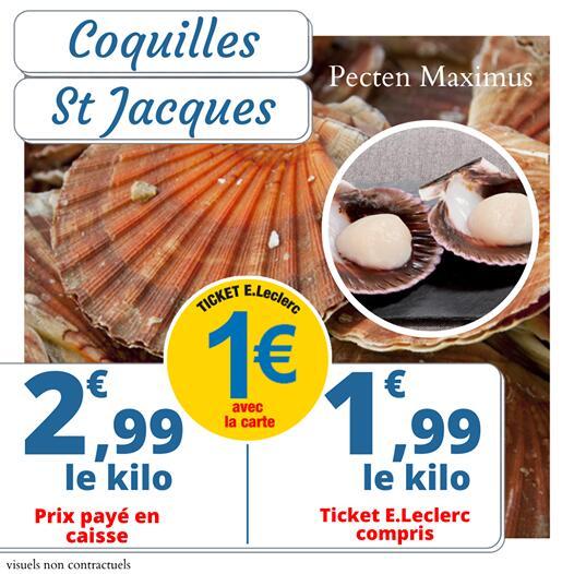 Coquille Saint Jacques - 1Kg (Via Carte de Fidélité) - Bain-de-Bretagne (35)