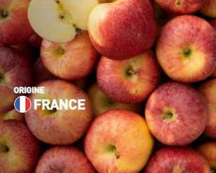1kg de Pommes Gala - Origine France