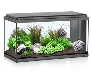 Aquarium Advance LED 80 Noir - 96L