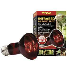 Lampe Éclairage pour Reptiles Exoterra Infrared Basking Spot - 75 W