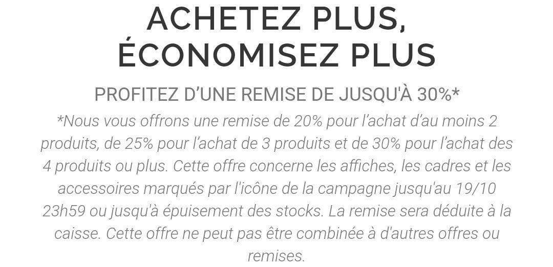 Jusqu'à 30% de réduction pour l'achat de 4 produits parmi une sélection - desenio.fr