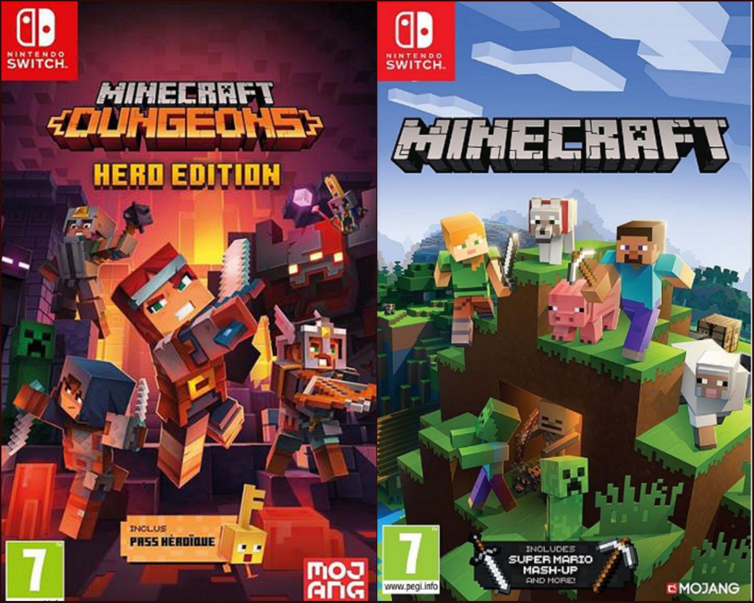 Minecraft ou Minecraft: Dungeons Hero Edition sur Switch