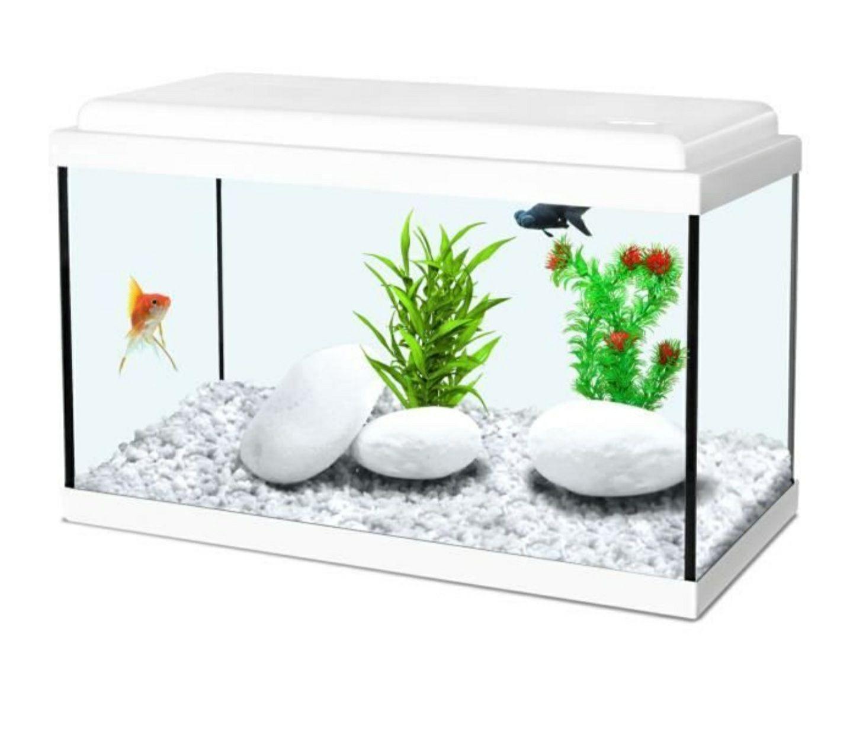 Aquarium Zolux Nanolife Kidz - 18L, 40 x 20 x 25 cm, Blanc