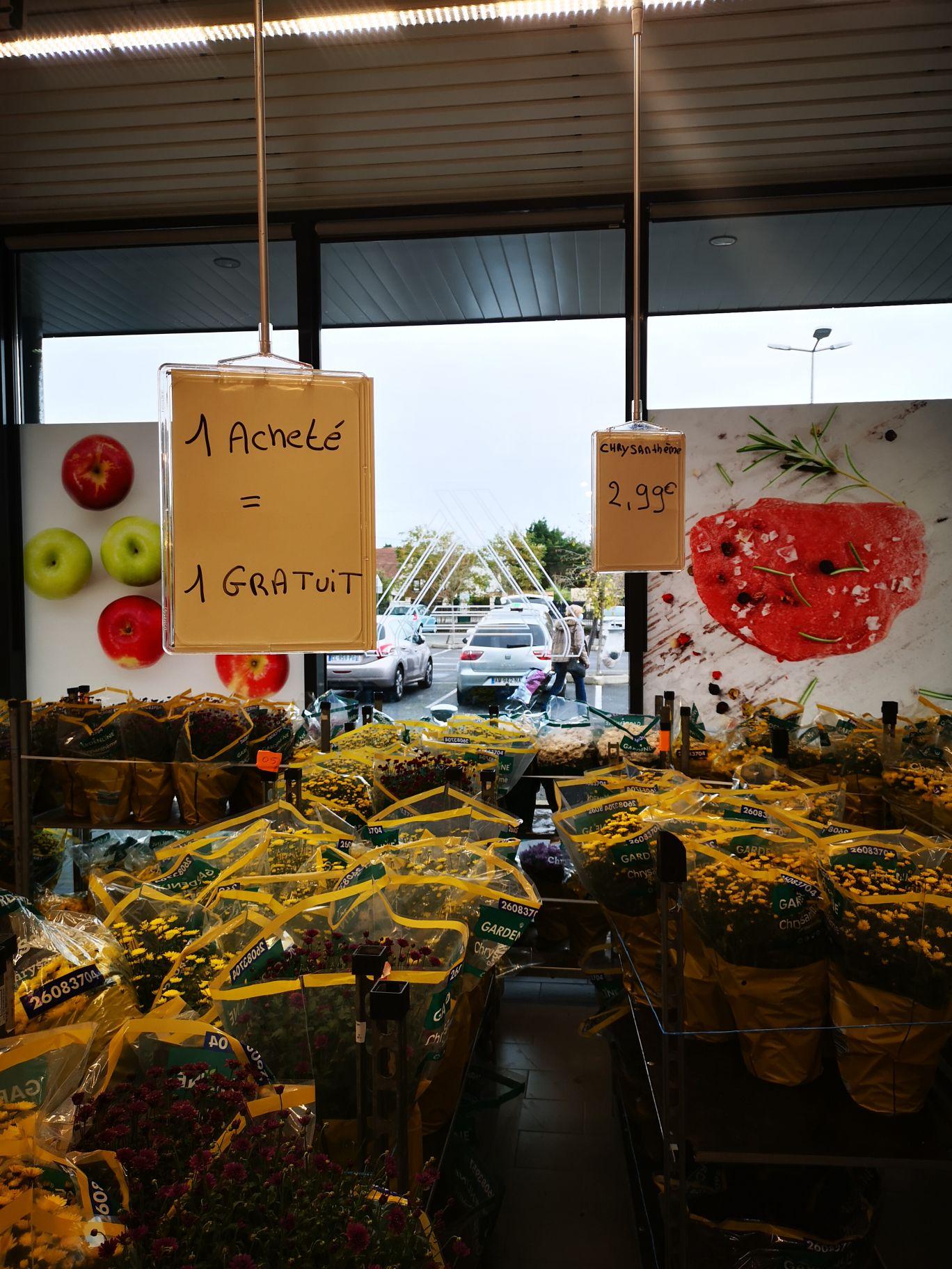 1 chrysanthème acheté = 1 offert - Breuil-le-Vert (60)