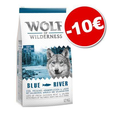 Sachet de croquettes pour chien Wolf of Wilderness - 12 kg, différents goûts
