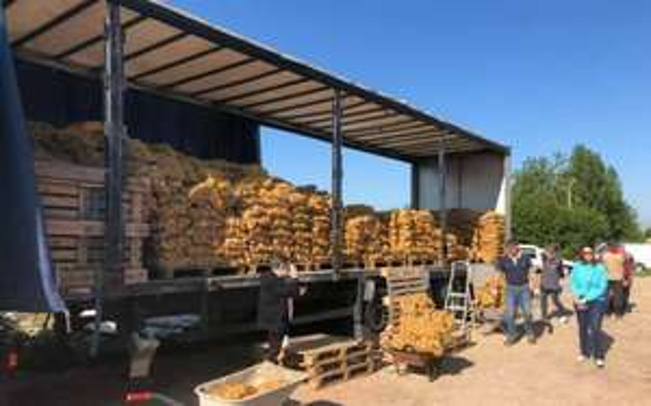Pommes de Terre à prix coûtant - Maurepas et Osny (78/95)