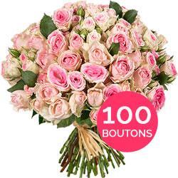 100 boutons de roses Mimi Eden