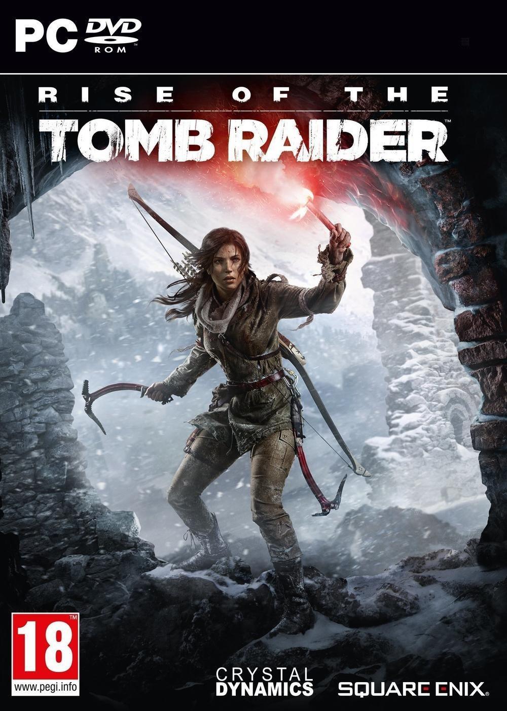 Rise of the Tomb Raider sur PC (Dématérialisé - Steam)