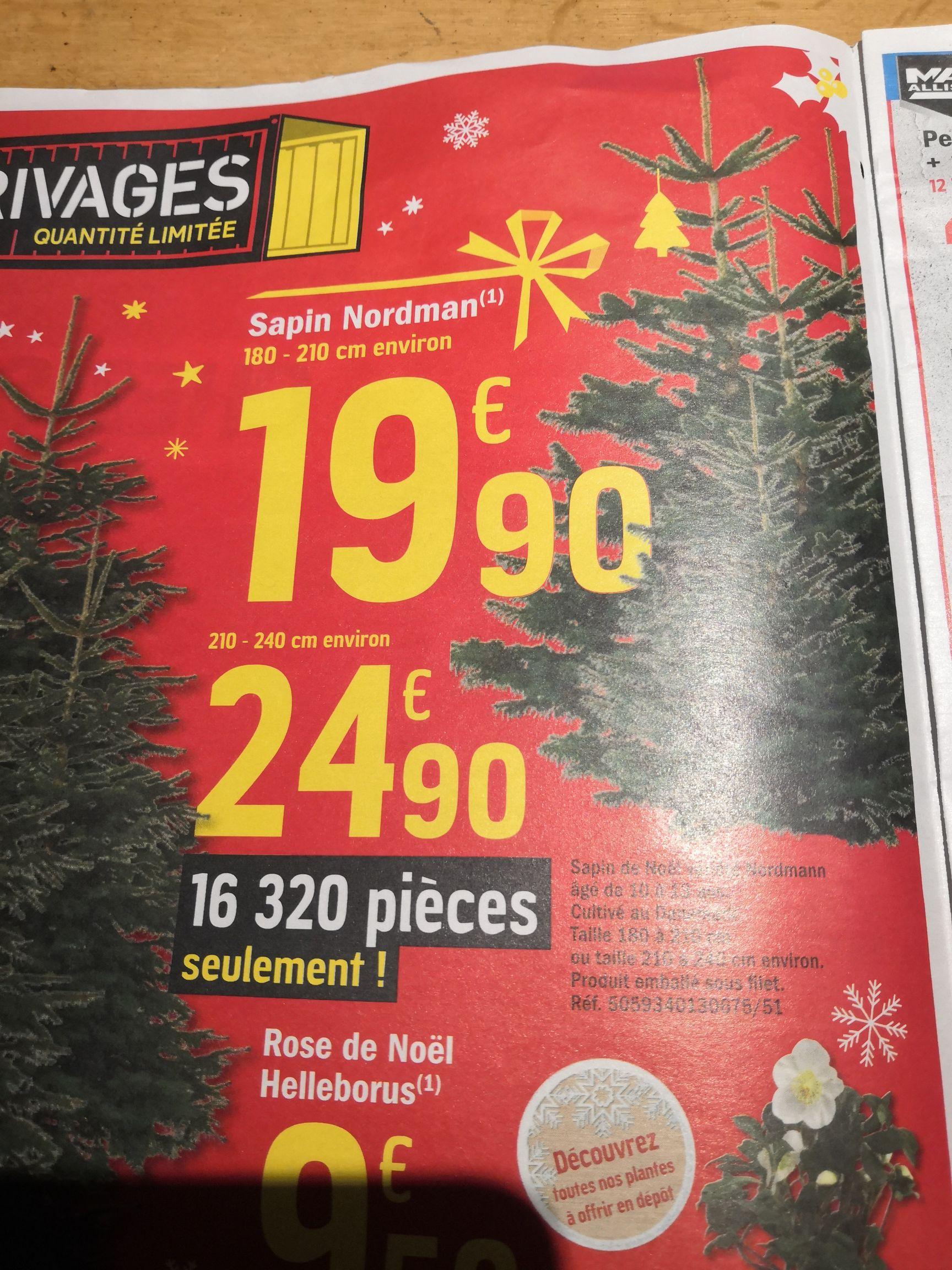 Sapin de Noël Nordman - 180-210 cm à 19.9€ ou 210-240 cm à 24.9€