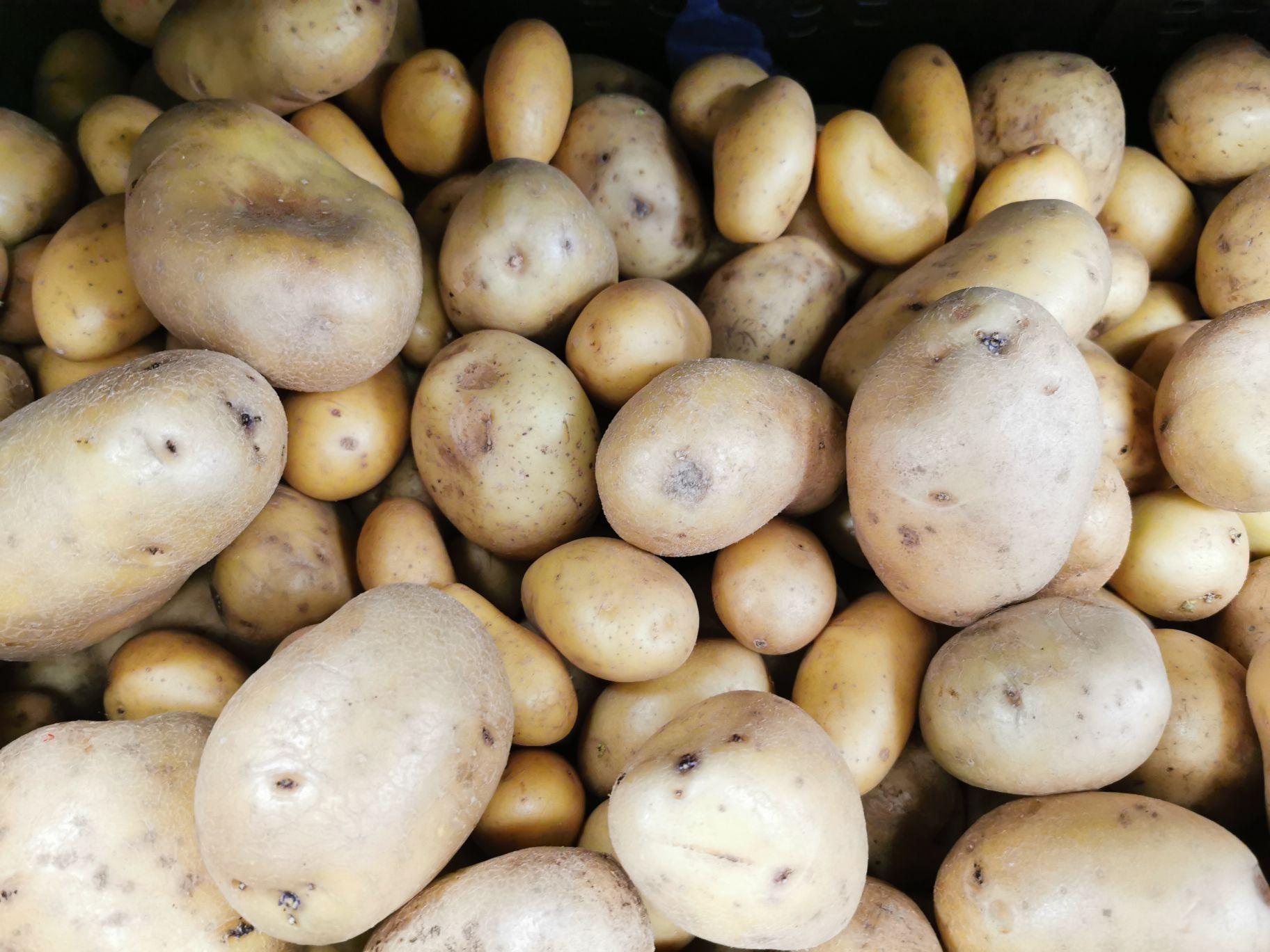 Pomme de terre, Origine France - Tang Frères (75)