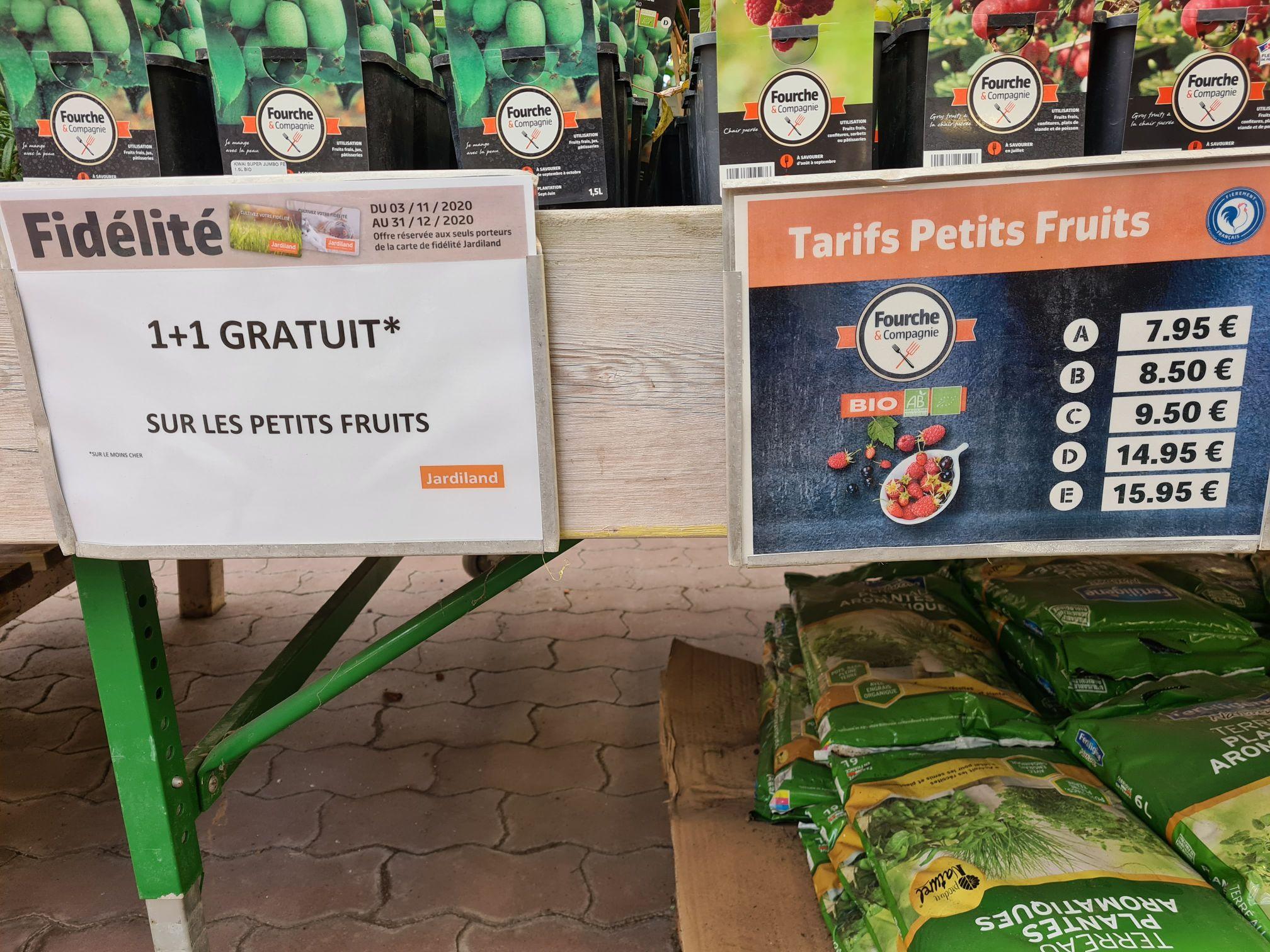 1 petit fruit acheté +1 offert (le moins cher) - Cormontreuil (51)