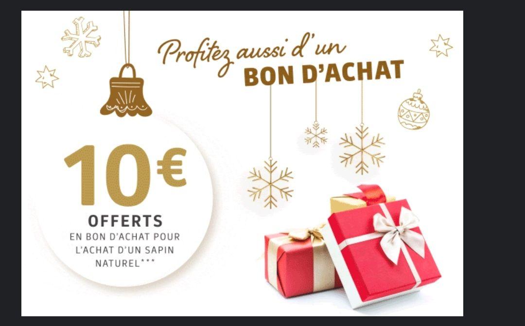 10€ offerts en bon d'achat pour l'achat d'un sapin naturel - Tours Nord (37)