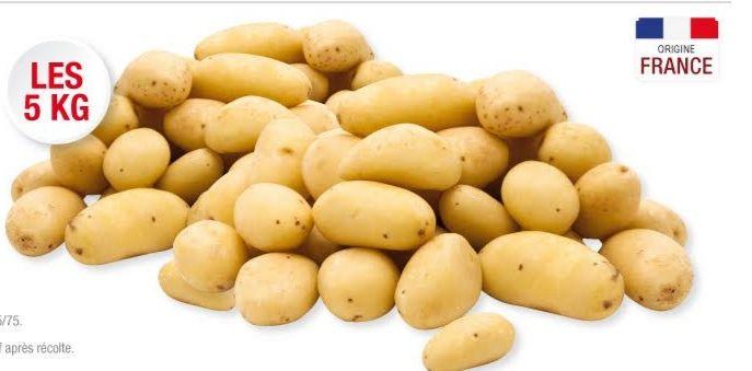Filet de 5 kg de pommes de terre de consommation - Origine France, Catégorie 1