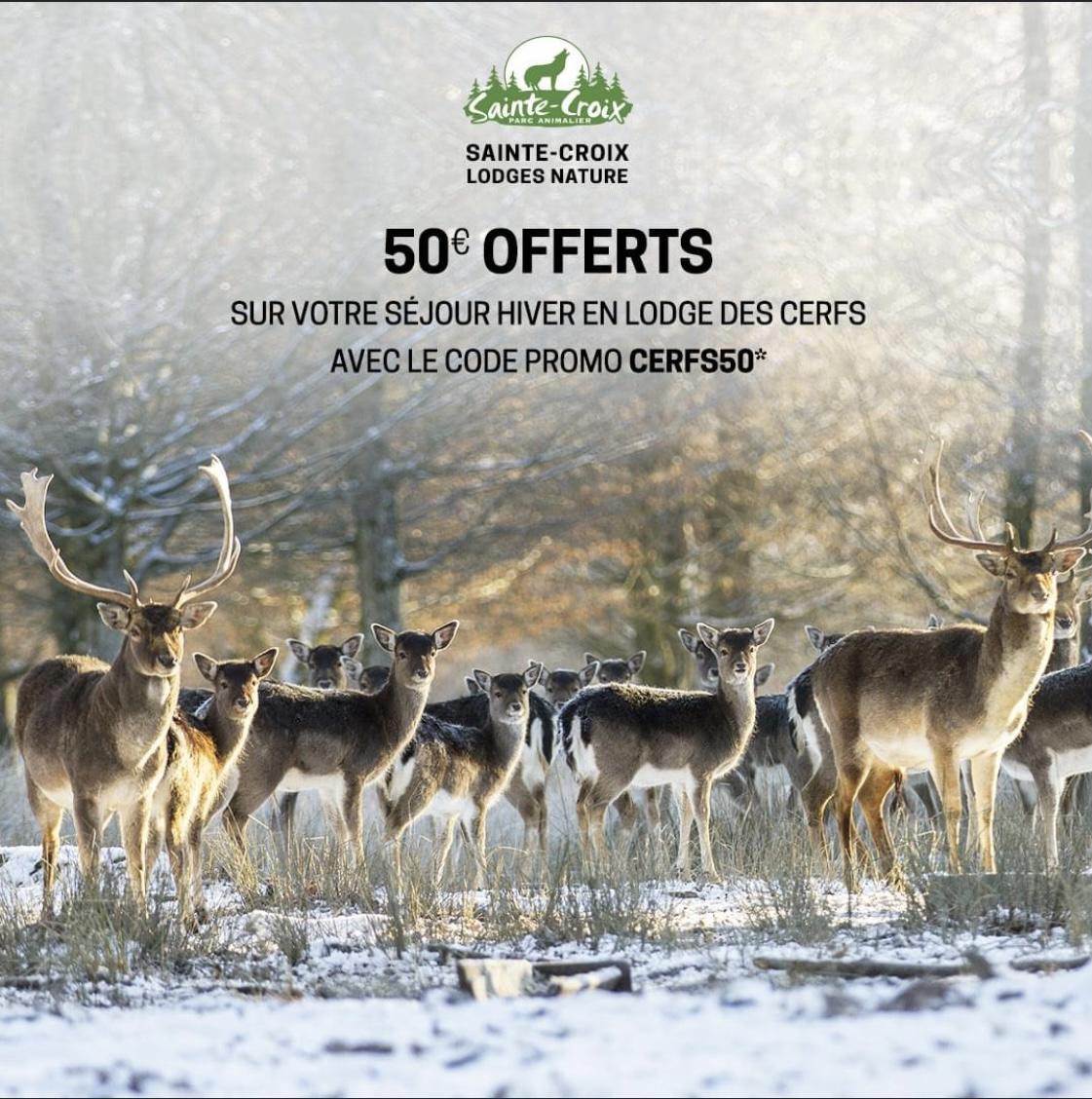 50€ offerts sur un séjour Hiver en Lodges des Grands cerfs - Parc Animalier de Sainte-Croix Rhodes (57) - ParcSainteCroix-LodgesNature.com