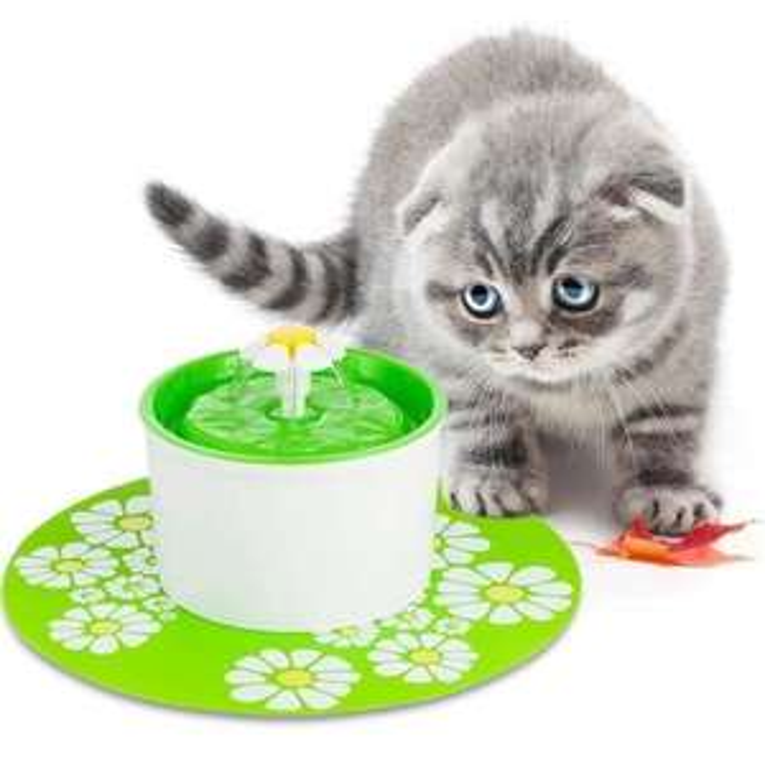 Fontaine à eau automatique pour animaux de compagnie - 1.6 L, vert (vendeur tiers)