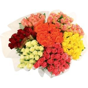 Bouquet de 20 roses unies