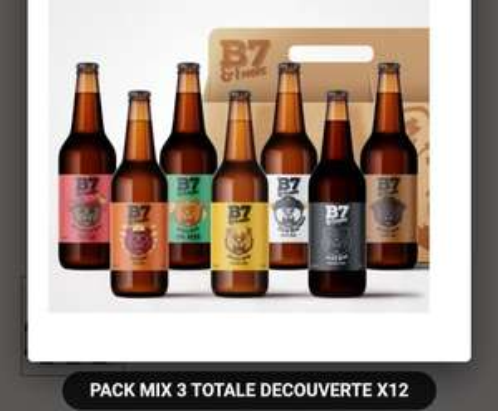 1 Pack de 12 bières artisanales B7&1More au choix acheté = 1 pack de 12 bières Totale Découverte Mix offert - B7and1More.com