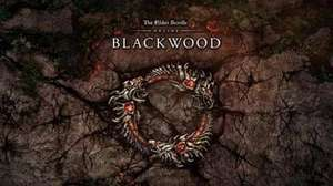 Précommande : Jeu The Elder Scrolls Online : Blackwood sur PC (Dématérialisé)